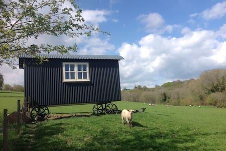 Hare Farm Shepherd's Hut
