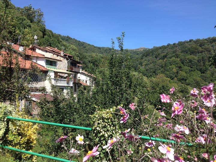 Residenza di Falletti, villaggio in mezzo al verde