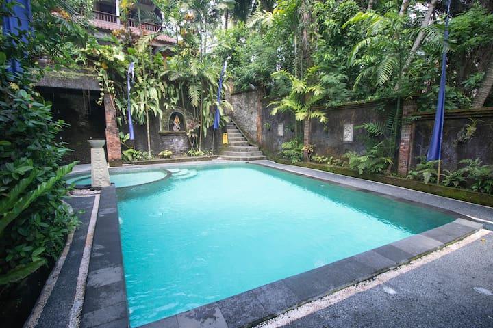 PROMO! 2 BR Pool, Kitchen. Walk to Monkey Forest