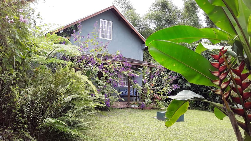 Blue Mountain Cottage