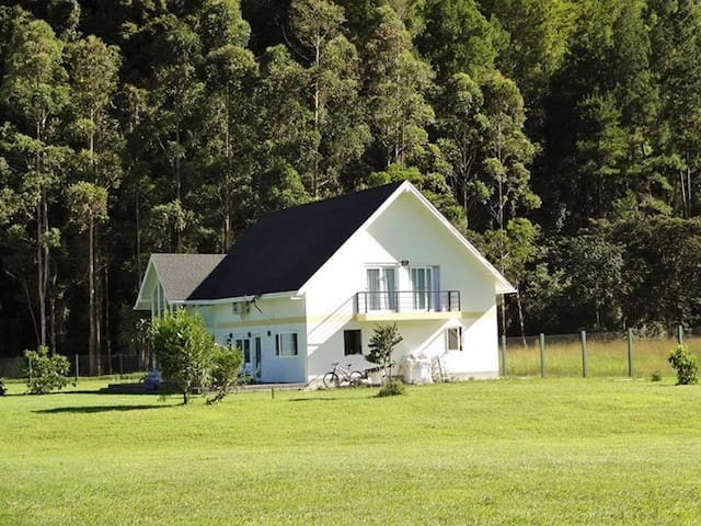 Alquilo hermosa casa en Oxapampa
