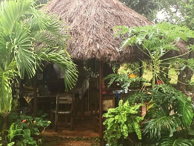 Elisa's Paradise, Santa Isabel Ecologic Farm