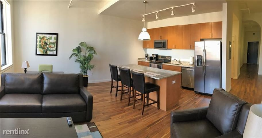 [1496]  Wonderful 1 BR Loft Apartments in Downtown