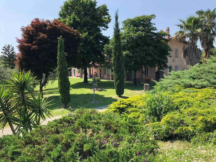 Luxury villa near Roma