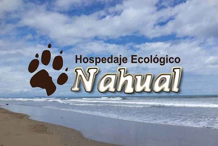 Nahual Eco Hostel - 8 Bed Mixed Dorm
