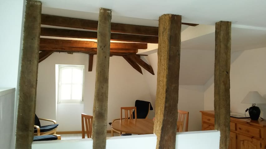 appartement du vieux collège - Château-Gontier