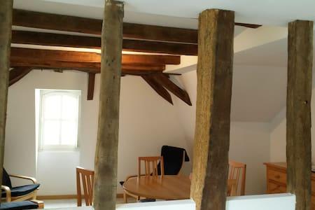 appartement du vieux collège - Château-Gontier - Apartment