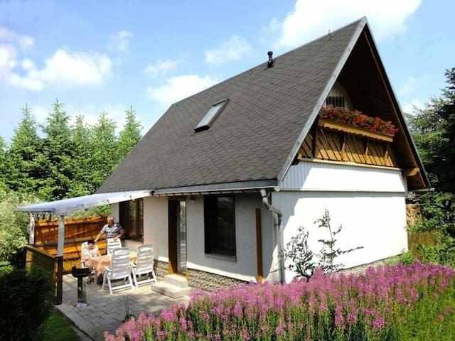 Ferienhaus für 5 Gäste mit 78m² in Sehmatal- Cranzahl (65842)