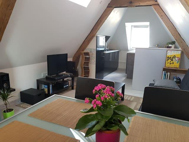 Appartement de charme rue Taison à Metz centre. - Metz - Apartamento