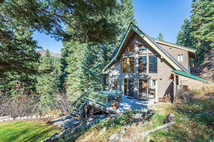 Secluded Pet Friendly Mountain Cabin - 20 Minutes to Downtown Durango