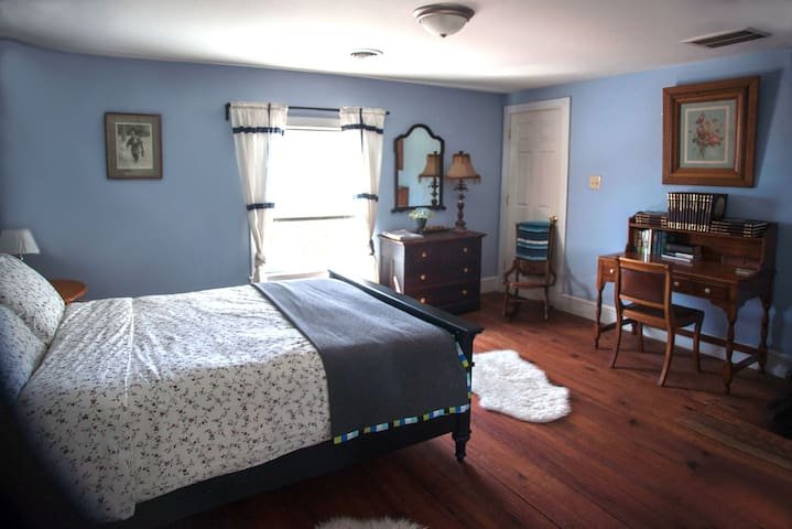 Blue Room- Queen Bed