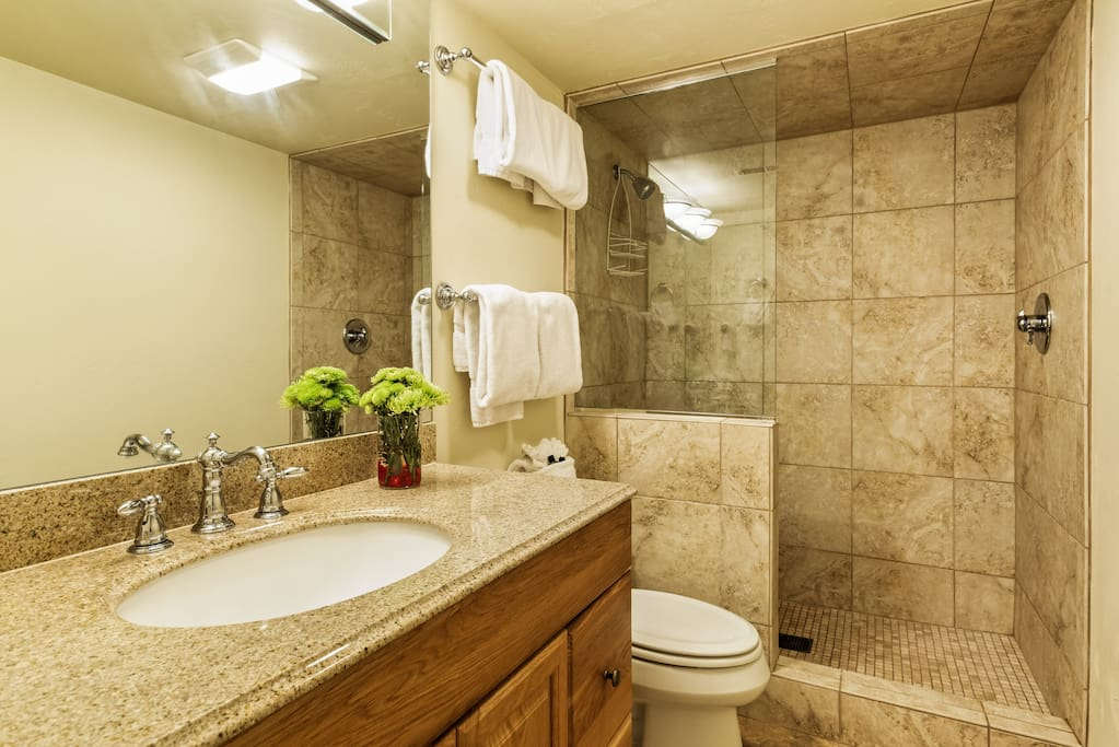 The recently renovated master bath features a luxurious European style shower.