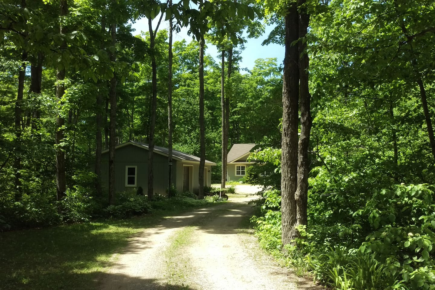 Our home nestled in the trees.