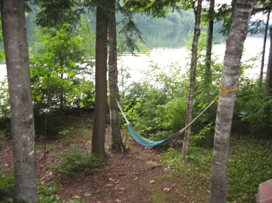 Lake View from Hammock