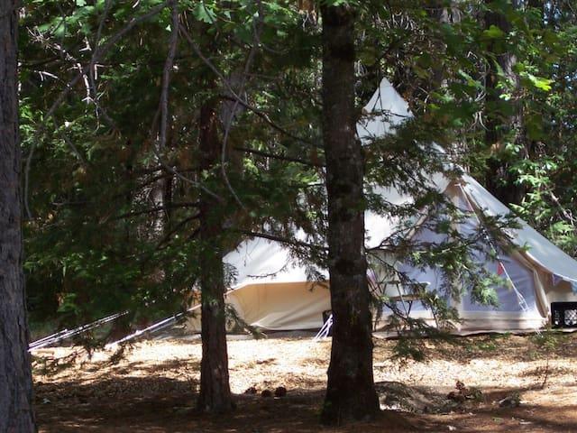 Secluded Campsite - Lots of Bonus Perks!