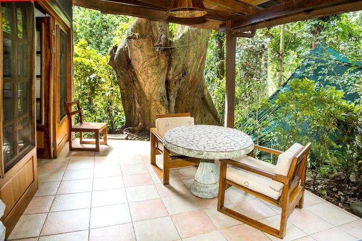 Very Affordable Jungle Gem Studio /Apartment