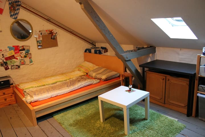 Rustic Room In The Center Of Bonn City - Bonn - Appartement