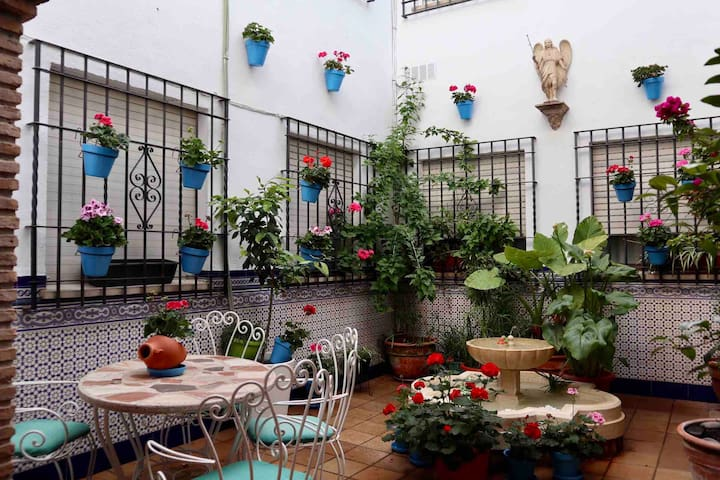 Apartamentos Casa del Azafrán. (En casco antiguo)