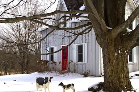 Charming Beaver Valley Farmhouse - Flesherton - House