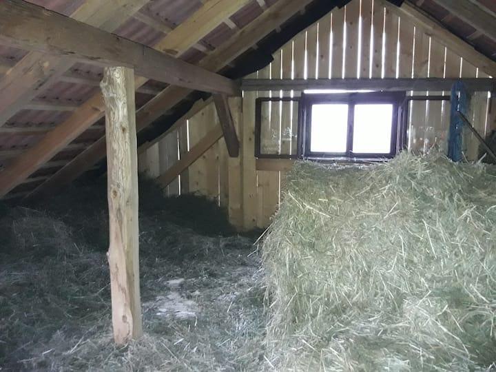 Ranč pri Geti - Sleeping on the haystack