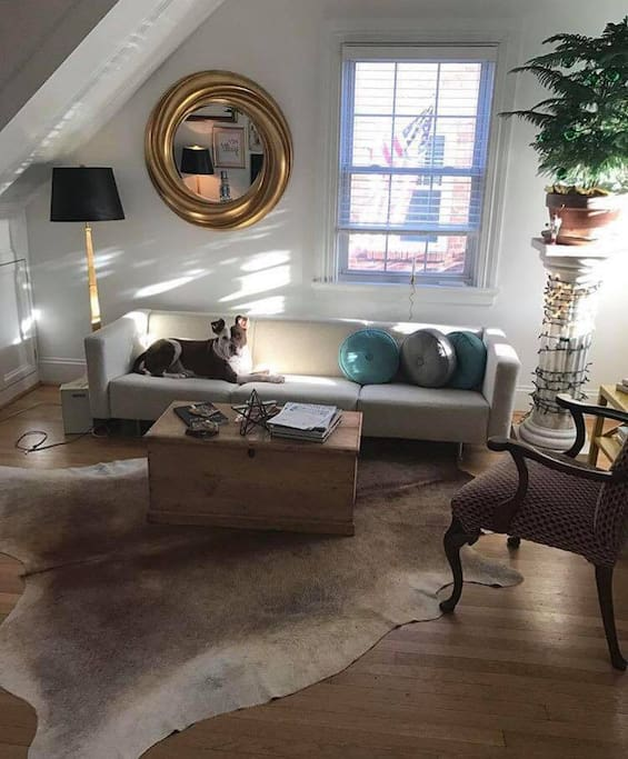 My pitty model. Different angle of foyer/sitting room.