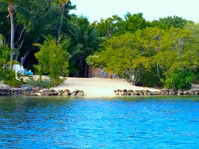 Our own private secluded beach with chaise lounges
