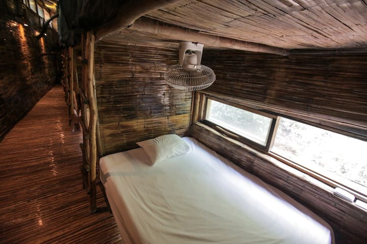Bed & private Cenote for couples in Mixed Dorm