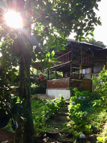 patag pine cottage