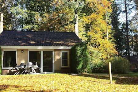 Vakantie bungalow, Veluwe, bossen - Garderen - Bungalou