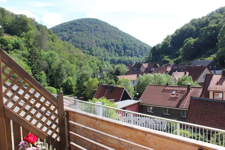 Holiday Home in Zorge with Garden, Terrace, BBQ, Deckchairs