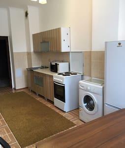 Astana Zhanuya Apartaments - Астана - Квартира