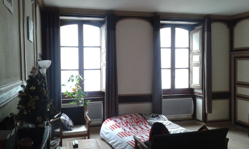 Grand salon dans appartement en hypercentre - Rennes - Wohnung