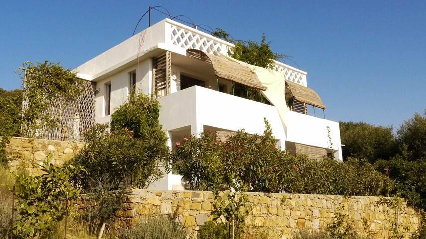 Spacious Villa Facing the Ocean