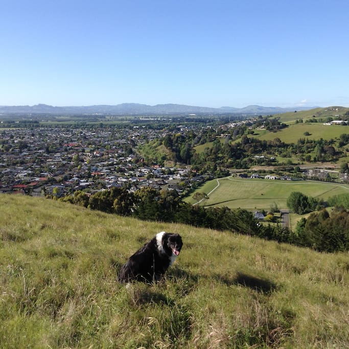 Great places to walk to near our house with great views.