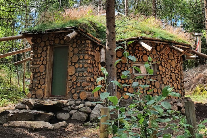 Round house in the forest
