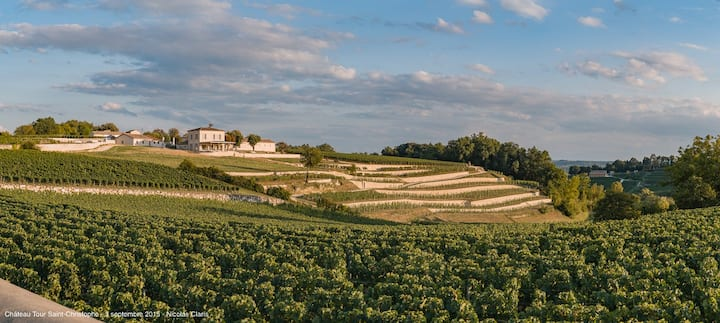 Apartment at the heart of a vineyard in St Emilion