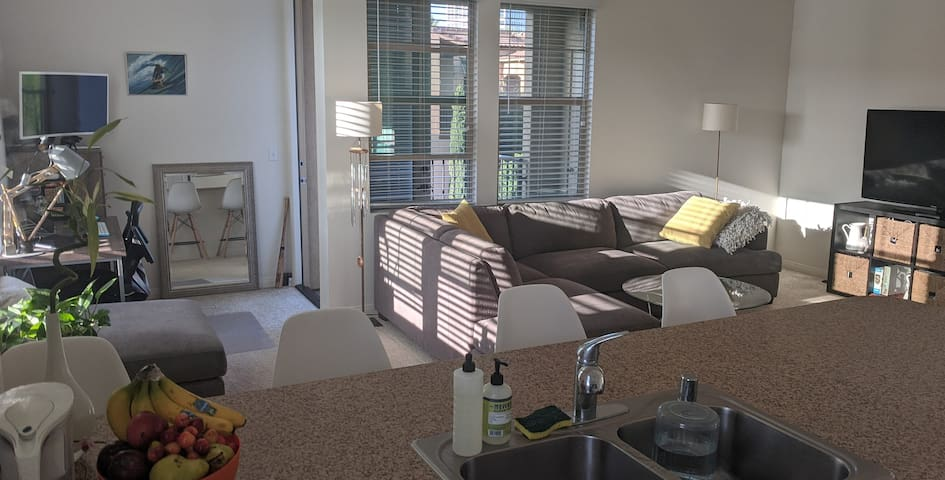 Beautiful and Bright 1bd/1ba apartment in Irvine