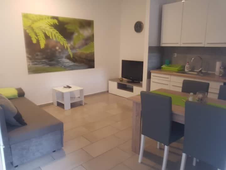 Beautiful Apartment*** in Pula near beach, Istria