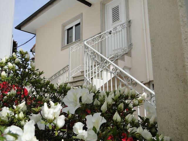 Casa do Pinheiro Manso - Vale de Cambra - House