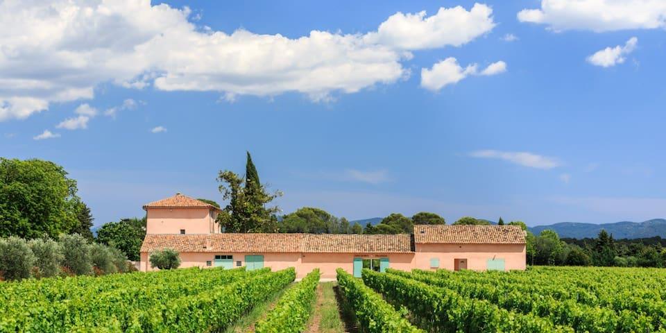 Vacances au coeur des vignes