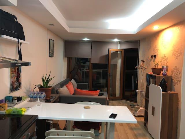 Cozy Little Residance Room