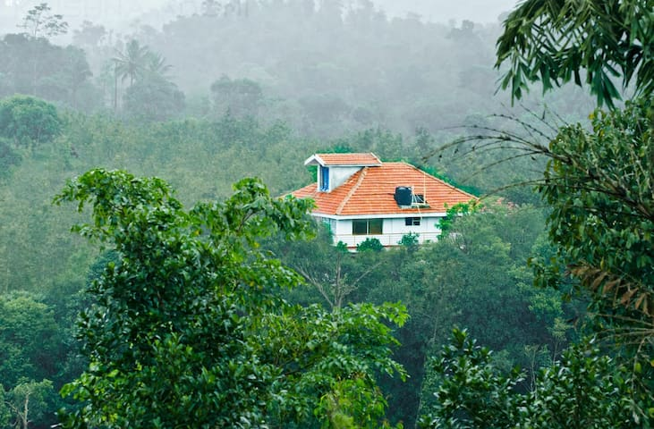 Cloud Alley Homestay - An Exclusive Getaway