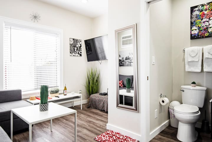 Studio size apartment, living room and bathroom in view