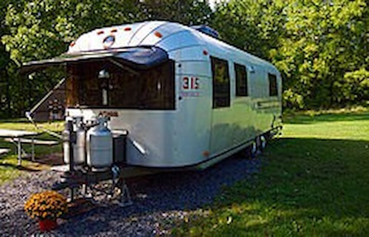 Doyle's Vineyard Vintage Avion RV