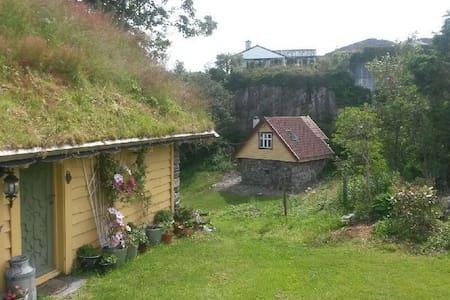 Sommarfloren Kobbeltveit gard sentralt på Sotra