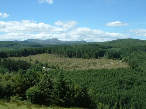 Dyfi Forest Cabin Machynlleth
