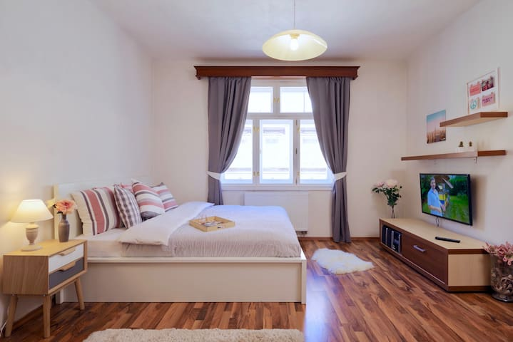 Modern apartment, super clean, 12 mins to center.