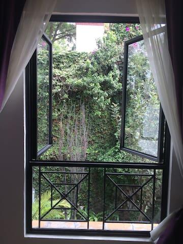 Casa Orozco Departamento tipo estudio Coyoacan