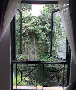 Departamento tipo estudio Coyoacán - Ciudad de México