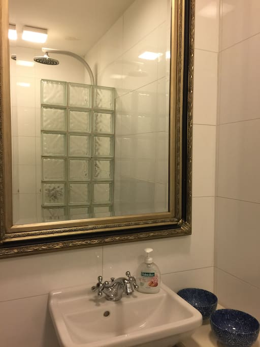 Shower with toilet and sink.